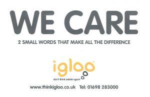 Front of Igloo Estate Agents Leaflet
